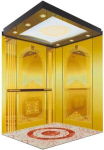 Home Hydraulic Villa Elevator with Italy Gmv System (RLS-253) pictures & photos