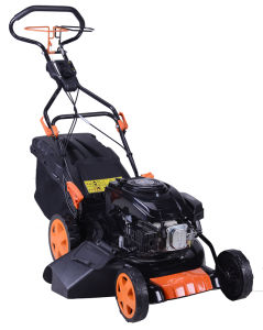 Lawn Mower Tk1p70f-20-S-Ab-V pictures & photos