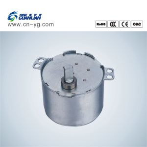 Tyd49-375-2 Small Synchronous AC Motor