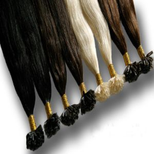 European Remy Nail U Tip Hair Extension