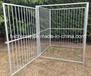 Galvanized Welded Wire Mesh Outdoor Dog Kennel pictures & photos