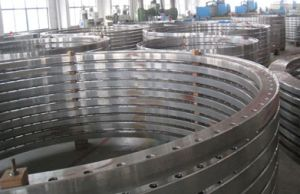 S355nl Z25 Large Diameter Flange pictures & photos
