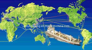 Professional Shipping Consolidate Service From China to South Caicos, Turks& Caicos pictures & photos