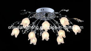 Modern Low Voltage LED Ceiling Lamp (MX9201/10)
