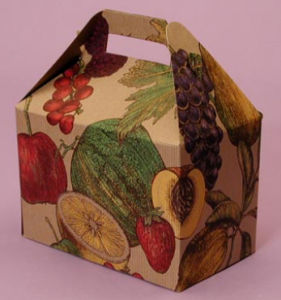 Printing Fruits Paper Gift Box with Handle (PB-088) pictures & photos