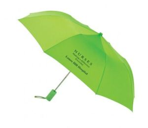 High Quality 2 Fod Promotional Auto Open Umbrella (BR-FU-126) pictures & photos