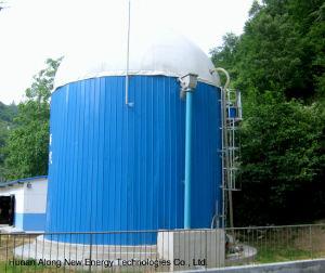 Biogas Digester 500m3 Cstr Reactor Biogas Plant