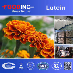 High Quality Lutein Powder Marigold Plant Extract Manufacturer pictures & photos