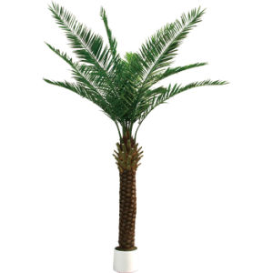 Artificial Date Palm Tree with Plastic Leaves in Super Quality
