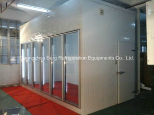 Customized Prefabricated Deep Walk in Freezer pictures & photos