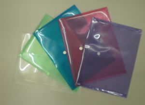 PP Documents Bag File Bag My Clear Bag