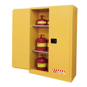 45 Gal Safety Storage Cabinet For Flammable Liquids (WA810450)