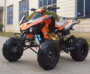 China 110cc-250cc KAWASAKI Style ATV with Engine (QY250ATV-19 ...
