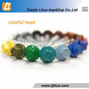 Colorful Hexagen Head Self Drilling Screws with Rubber Washers pictures & photos