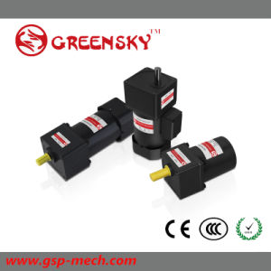 24V Mini Geared Reversible Induction Micro AC Motor