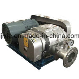 Chemical Industrial Roots Vacuum Pump
