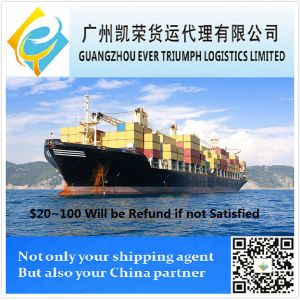 Ocean Transport Shipping Agent in China to Colombia