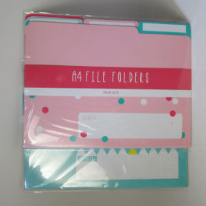 A4 Paper File Folder Pack of 6 pictures & photos
