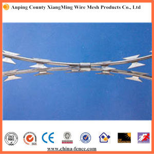 Cbt Type Concertina Razor Barbed Wire (ISO9001: 2001) pictures & photos
