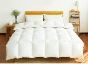 20 Year Factory Supplying Down/Feather Quilt Comforter Duvet