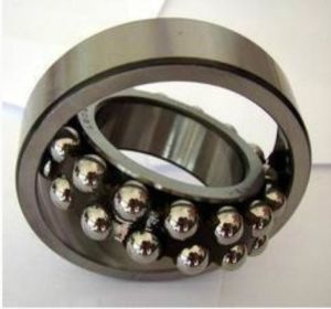 2304 Tn9 Industrial Components Self-Aligning Ball Bearing SKF Bearings pictures & photos