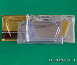 heat sealed plastic containers made-in-China pictures & photos