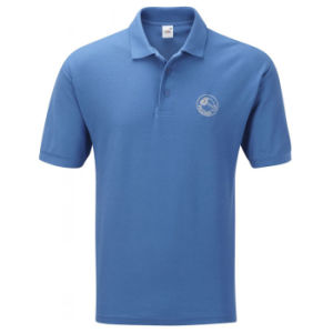 Fine Jersey Polo Shirt with Custom Logo and Brand (PS247W) pictures & photos