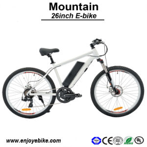 Mountain Electric Bike Bicycle E-Bike E-Bicycle Motorcycle Lithium Battery 9ah E Bike Electric Bicycle (PE-TDE07Z-2)