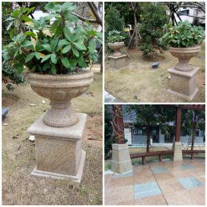 Granite G682 Carving Stone, Stone Flower Pot for Garden, Outdoor