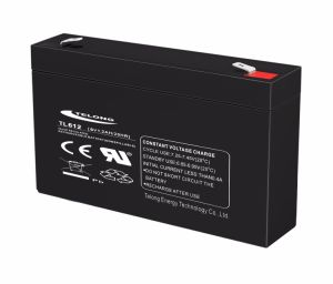 Battery UPS Backup Door Control System Lead Acid Battery 6V 1.2ah pictures & photos