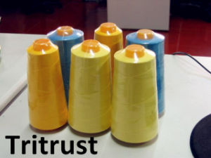 Spun Polyester Sewing Thread (20/2-60/2 Class Polyester Fibre)