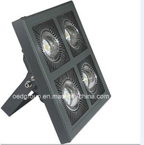 Popular Selling LED Flood Light 240W pictures & photos