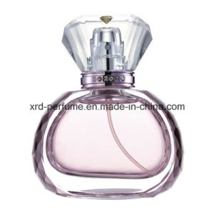 Hot Sale Factory Price Customized Fashion Design Various Perfume