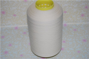 20/22d 300-330s Thrown Silk Yarn
