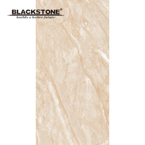 600X1200mm Stone Pattern Thin Floor or Wall Tile (BSYP120609) pictures & photos