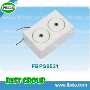 Piezo Siren/Magnetic Contact/Security/Alarm /Piezo Alarm pictures & photos
