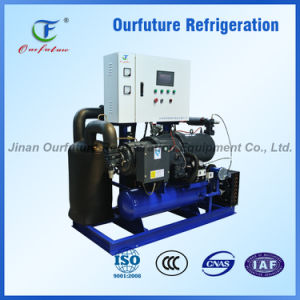 Fusheng Cold Rooms Condensing Unit Supplier