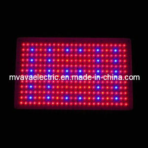 600W LED Quad Band Hydroponic Grow Light