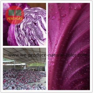 Cabbage Red Natural Colorant
