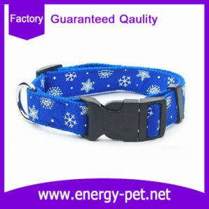 OEM Dog Collar From China 2017