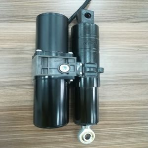 China 12V Electro Hydraulic - China Linear Actuator, Electric Linear