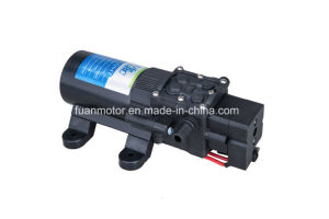 Lifesrc Compact Agricultural 12V/24V Diaphragm Pump pictures & photos