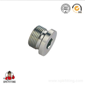 4b-Wd Bsp Threaded Copper Male Fittings Plug pictures & photos
