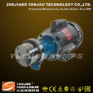 Magnetic Drive Pump with Motor pictures & photos