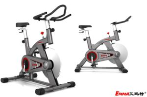 Light Commercial Use Spin Bike Home Use Fitness Bike Am-S730 pictures & photos