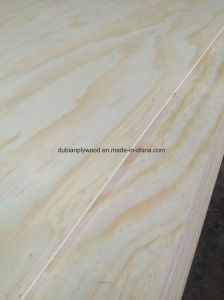 Visit Our Buyer′s Factory in Russia for Plywood pictures & photos