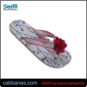 Soft Designer Flip Flops