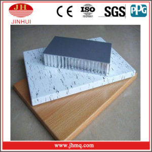 China High Quality Marble Carbon Fiber Panels (JH207B