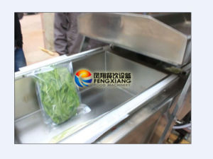 Dz-600 Vacuum Packaging Machine for Food (Vegetable, Sausage, Meat, Bacon Cheese, Tea, Rice etc) pictures & photos