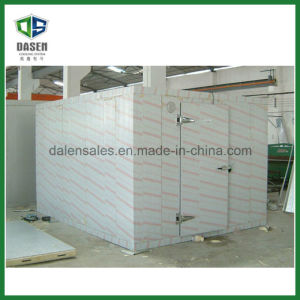 Ce Approved Quality Mobile Cold Freezer Room with Bitzer Compressor pictures & photos